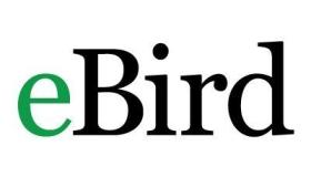 eBird – San Diego County